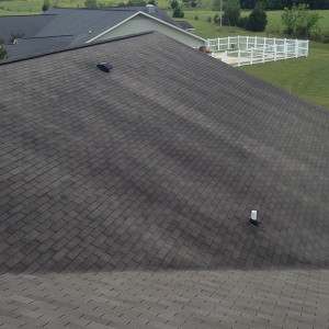 Black streaks on a roof can cause damage to the roofs surface